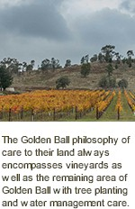 https://www.goldenball.com.au/ - Golden Ball - Tasting Notes On Australian & New Zealand wines