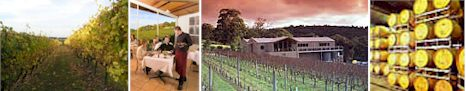 http://www.paringaestate.com.au/ - Paringa Estate - Tasting Notes On Australian & New Zealand wines